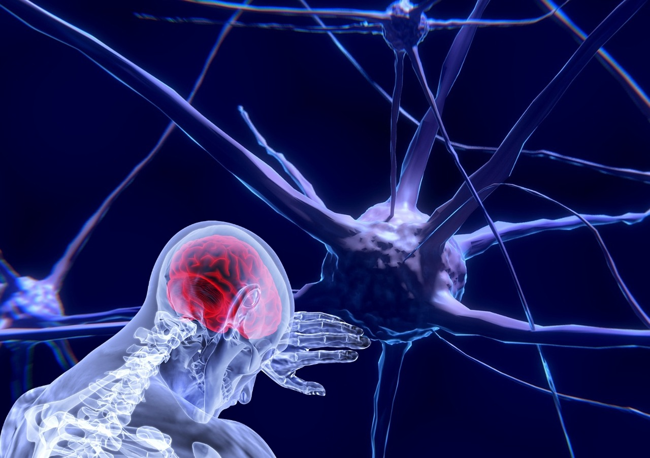 Neural Networks Can Predict Time of Death- AI Digest II
