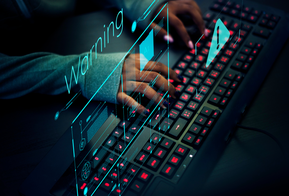 Fraud detection through data mining